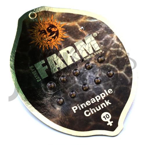 Pineapple Chunk Feminised насіння конопель: фото, характеристики, відгуки, опис