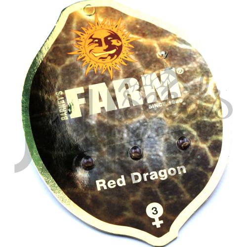 Red Dragon Feminised насіння конопель: фото, характеристики, відгуки, опис