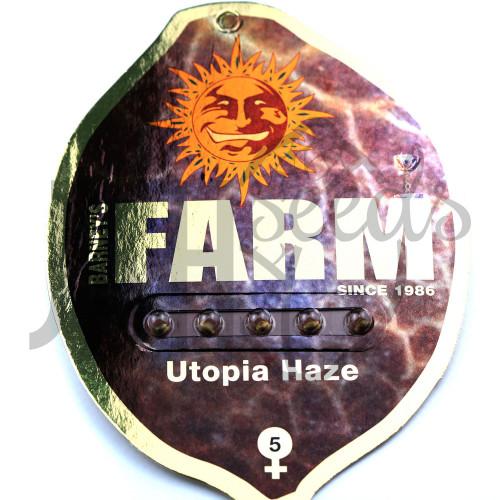 Utopia Haze Feminised насіння конопель: фото, характеристики, відгуки, опис