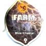 Blue Cheese Feminised насіння конопель: фото, характеристики, відгуки, опис
