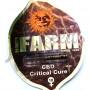 CBD Critical Cure Feminised насіння конопель: фото, характеристики, відгуки, опис
