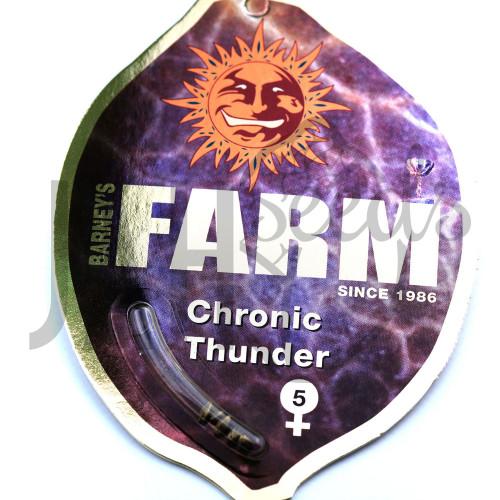 Chronic Thunder Feminised насіння конопель: фото, характеристики, відгуки, опис