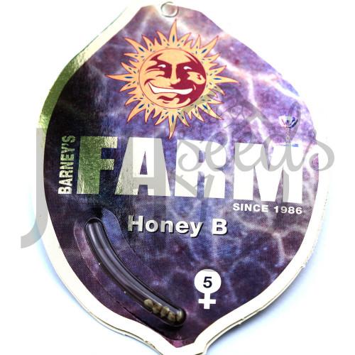 Honey B Feminised насіння конопель: фото, характеристики, відгуки, опис
