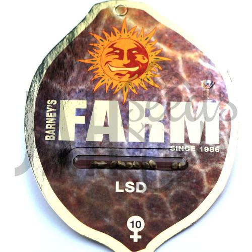LSD Feminised насіння конопель: фото, характеристики, відгуки, опис