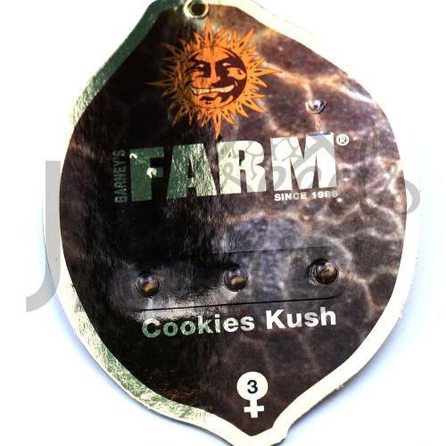 COOKIES KUSH Feminised насіння конопель: фото, характеристики, відгуки, опис