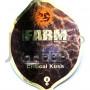 Critical Kush Feminised семена конопли: фото, характеристики, отзывы, описание