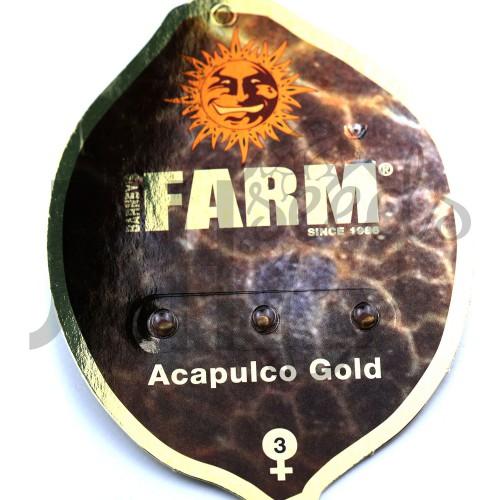 Acapulco Gold Feminised насіння конопель: фото, характеристики, відгуки, опис