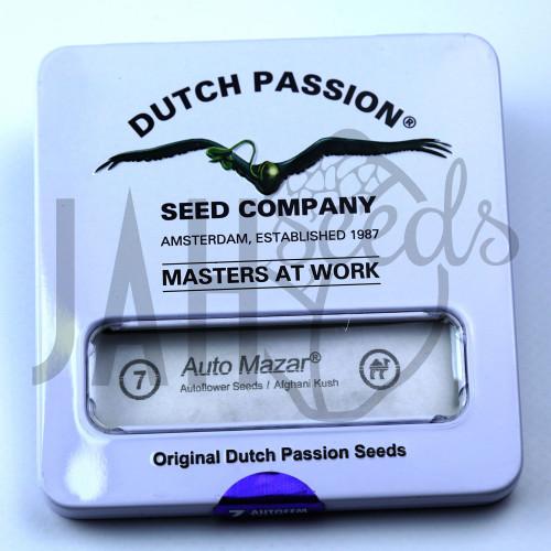 Auto Mazar Feminised насіння конопель: фото, характеристики, відгуки, опис