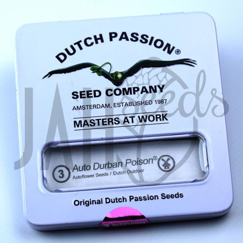 Auto Durban Poison feminised насіння конопель: фото, характеристики, відгуки, опис