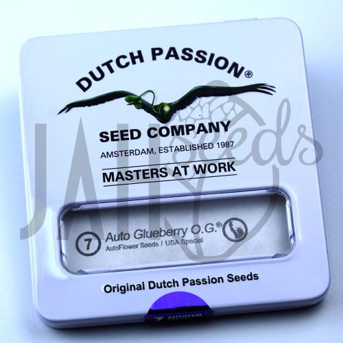 Auto Glueberry OG feminised насіння конопель: фото, характеристики, відгуки, опис