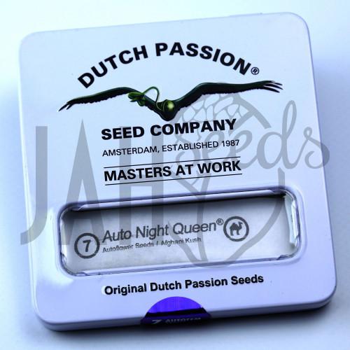 Auto Night Queen feminised насіння конопель: фото, характеристики, відгуки, опис