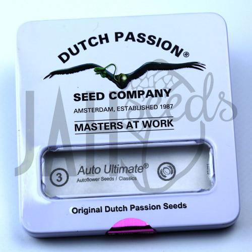 Auto Ultimate feminised насіння конопель: фото, характеристики, відгуки, опис