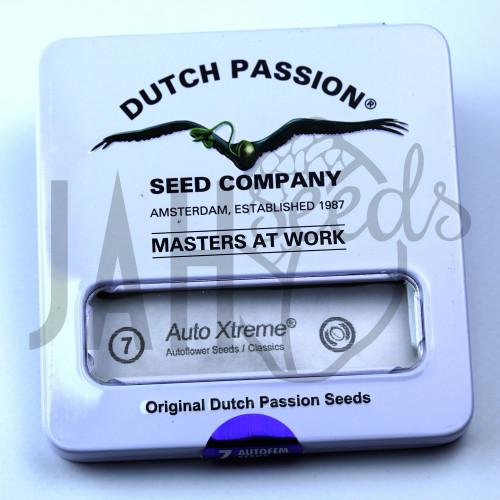 Auto Xtreme feminised насіння конопель: фото, характеристики, відгуки, опис