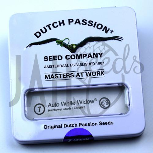 Auto White Widow Feminised - Dutch Passion насіння конопель: фото, характеристики, відгуки, опис
