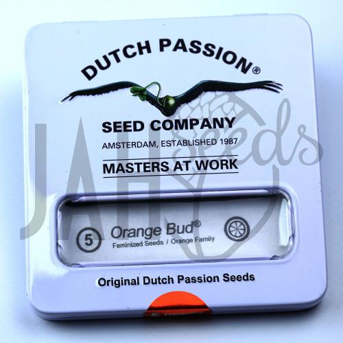 Orange Bud feminised насіння конопель: фото, характеристики, відгуки, опис