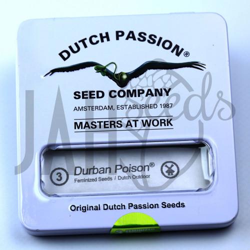 Durban Poison Feminised насіння конопель: фото, характеристики, відгуки, опис