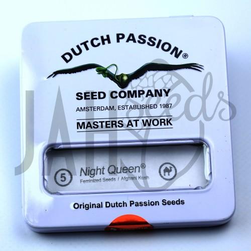 Night Queen Feminised насіння конопель: фото, характеристики, відгуки, опис