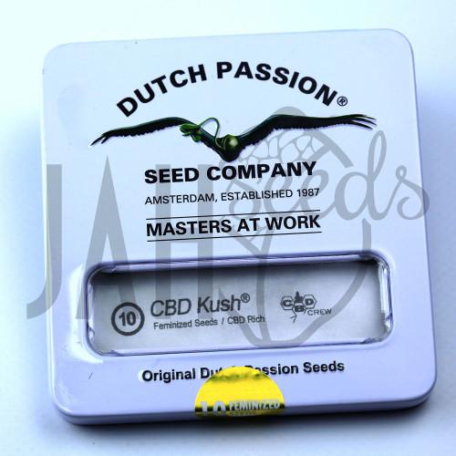 CBD Kush feminised насіння конопель: фото, характеристики, відгуки, опис