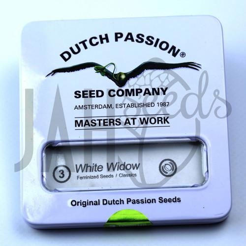 White Widow feminised насіння конопель: фото, характеристики, відгуки, опис