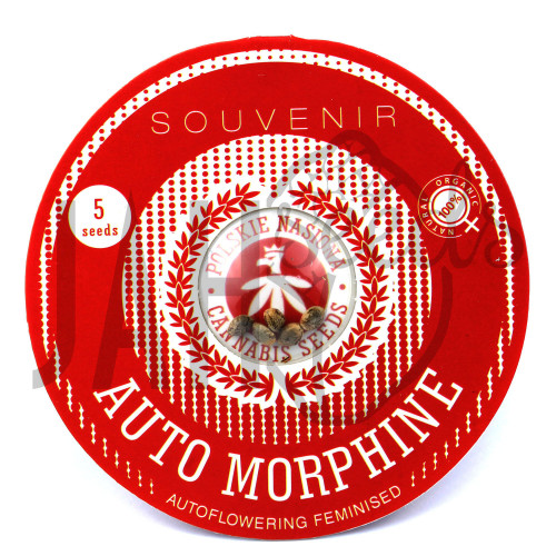 AUTO MORPHINE FEMINISED насіння конопель: фото, характеристики, відгуки, опис