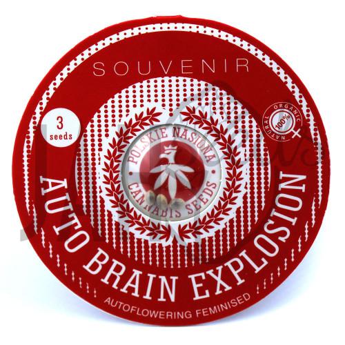AUTO BRAIN EXPLOSION FEMINISED насіння конопель: фото, характеристики, відгуки, опис