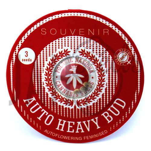 AUTO HEAVY BUD FEMINISED насіння конопель: фото, характеристики, відгуки, опис
