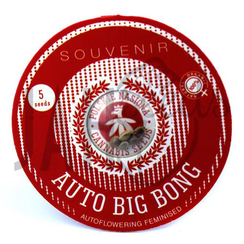 AUTO BIG BONG FEMINISED насіння конопель: фото, характеристики, відгуки, опис