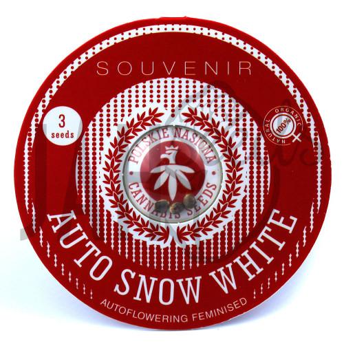 AUTO SNOW WHITE FEMINISED насіння конопель: фото, характеристики, відгуки, опис
