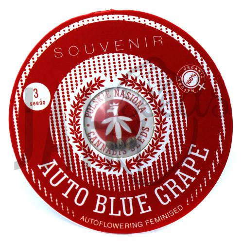 AUTO BLUE GRAPE FEMINISED насіння конопель: фото, характеристики, відгуки, опис