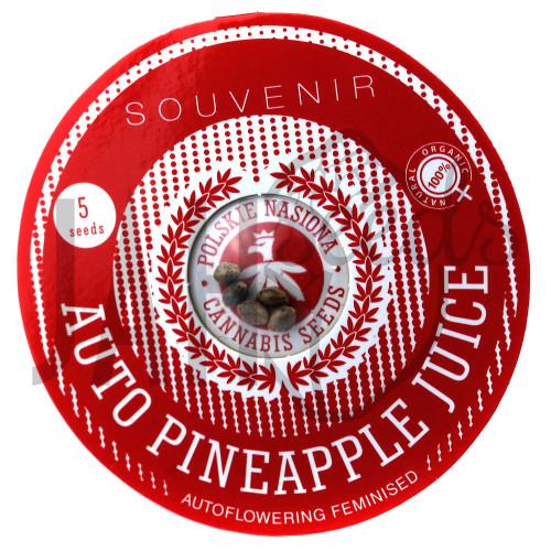 AUTO PINEAPPLE JUICE FEMINISED насіння конопель: фото, характеристики, відгуки, опис