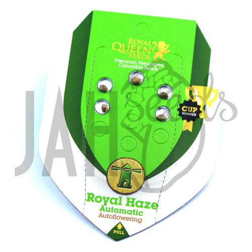 Auto Royal Haze Feminised насіння конопель: фото, характеристики, відгуки, опис