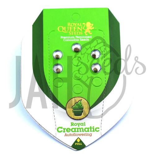Auto Royal Creamatic Feminised насіння конопель: фото, характеристики, відгуки, опис
