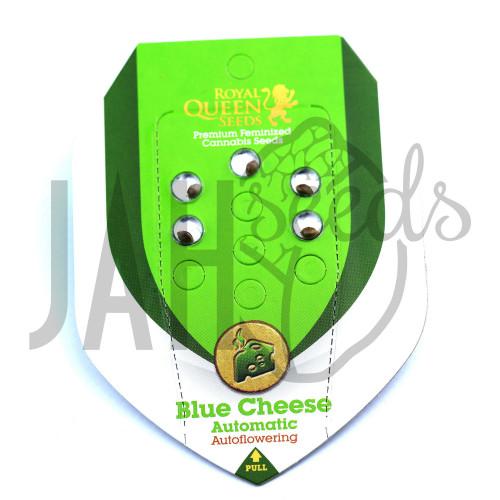 Auto Blue Cheese Feminised насіння конопель: фото, характеристики, відгуки, опис