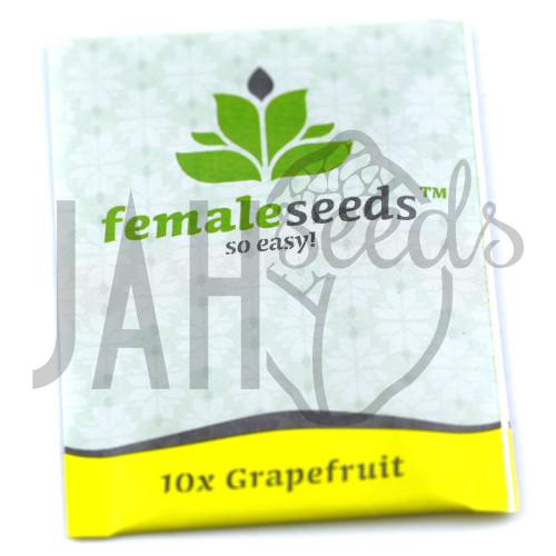 Grapefruit Feminised насіння конопель: фото, характеристики, відгуки, опис