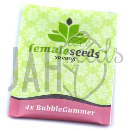 Bubblegummer Feminised насіння конопель: фото, характеристики, відгуки, опис