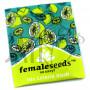Lemon Kush Feminised насіння конопель: фото, характеристики, відгуки, опис