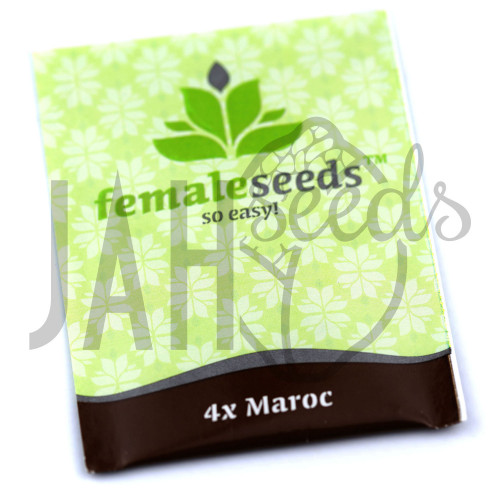 Maroc Feminised насіння конопель: фото, характеристики, відгуки, опис