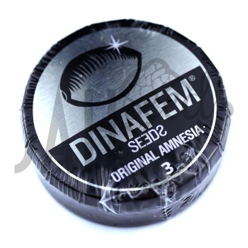 Original Amnesia Feminised насіння конопель: фото, характеристики, відгуки, опис
