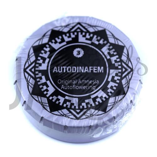 Auto Original Amnesia Feminised насіння конопель: фото, характеристики, відгуки, опис