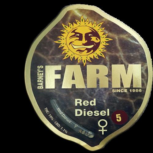 Red Diesel Feminised насіння конопель: фото, характеристики, відгуки, опис