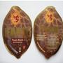 Tangelo Rapido Feminised насіння конопель: фото, характеристики, відгуки, опис
