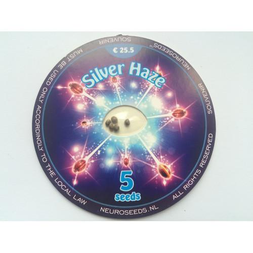 Silver Haze  насіння конопель: фото, характеристики, відгуки, опис