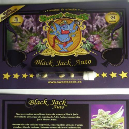 Auto Black Jack Feminized насіння конопель: фото, характеристики, відгуки, опис