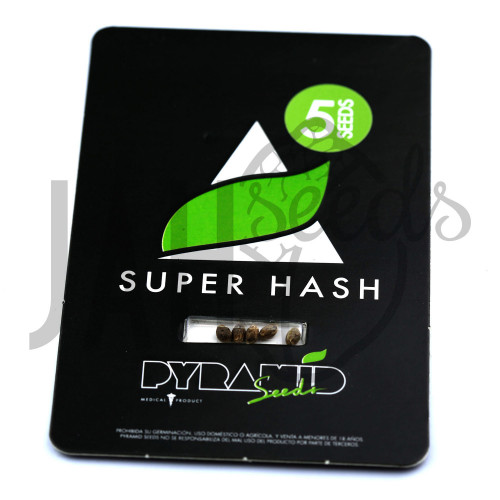 Super Hash Feminised насіння конопель: фото, характеристики, відгуки, опис