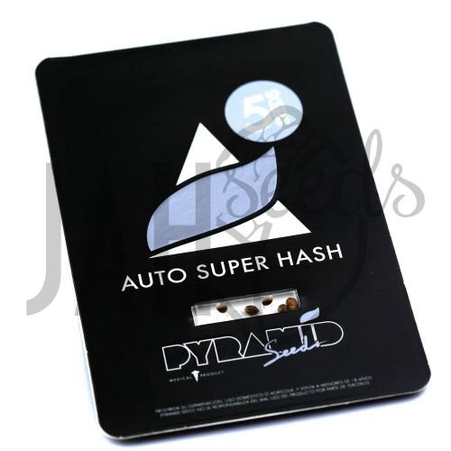 Auto Super Hash Feminised насіння конопель: фото, характеристики, відгуки, опис